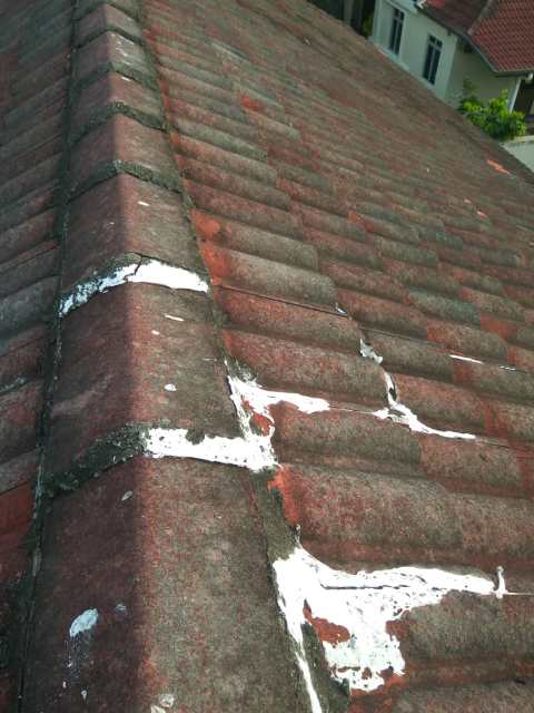 Roof tiles that were repaired