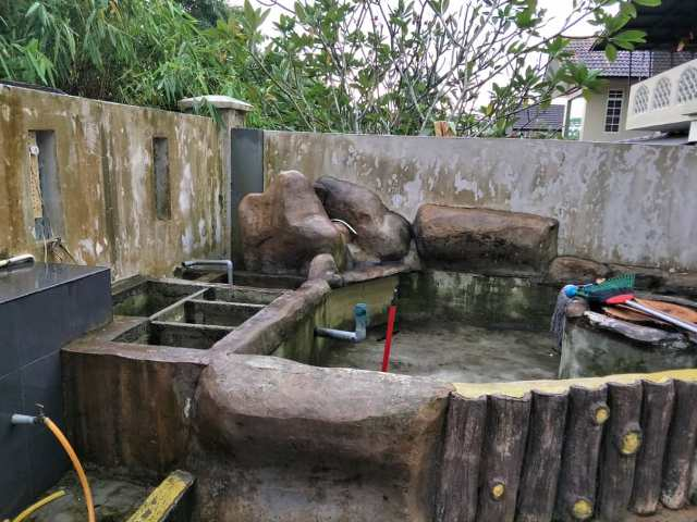Maintenance of a live pond is one of the big maintenance issues in the aftermath